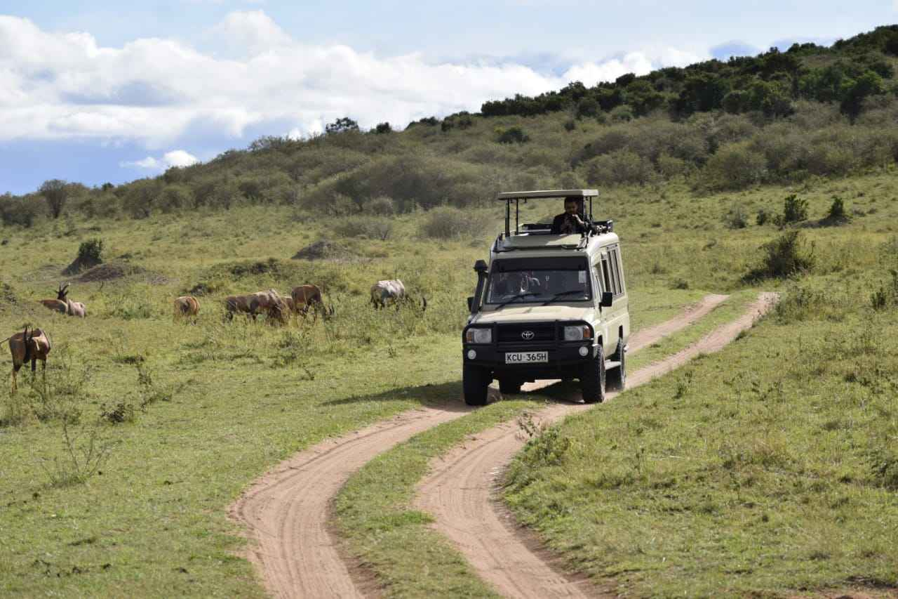 Differences between using a land cruiser and tour van hire Kenya